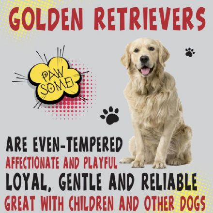 Golden Retriever Metal Wall Sign
